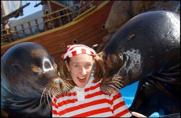 """Avast, Me Hearties! After 15 Years of Hilarious Hijinks and Pinniped Pranks, Seaworld Orlando's """"clyde and Seamore Take Pirate Island"""" Show Will Sail off into the Sunset. The Final Act…"""