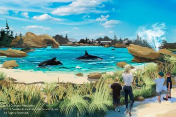 Amidst the Controversy Surrounding Seaworld, It Seems Their Design Engineering Team Has Been Hard at Work, Conceptualizing the Whale Pools, Providing Them with Additional, Arguably Much Needed Space. Seaworld Says…