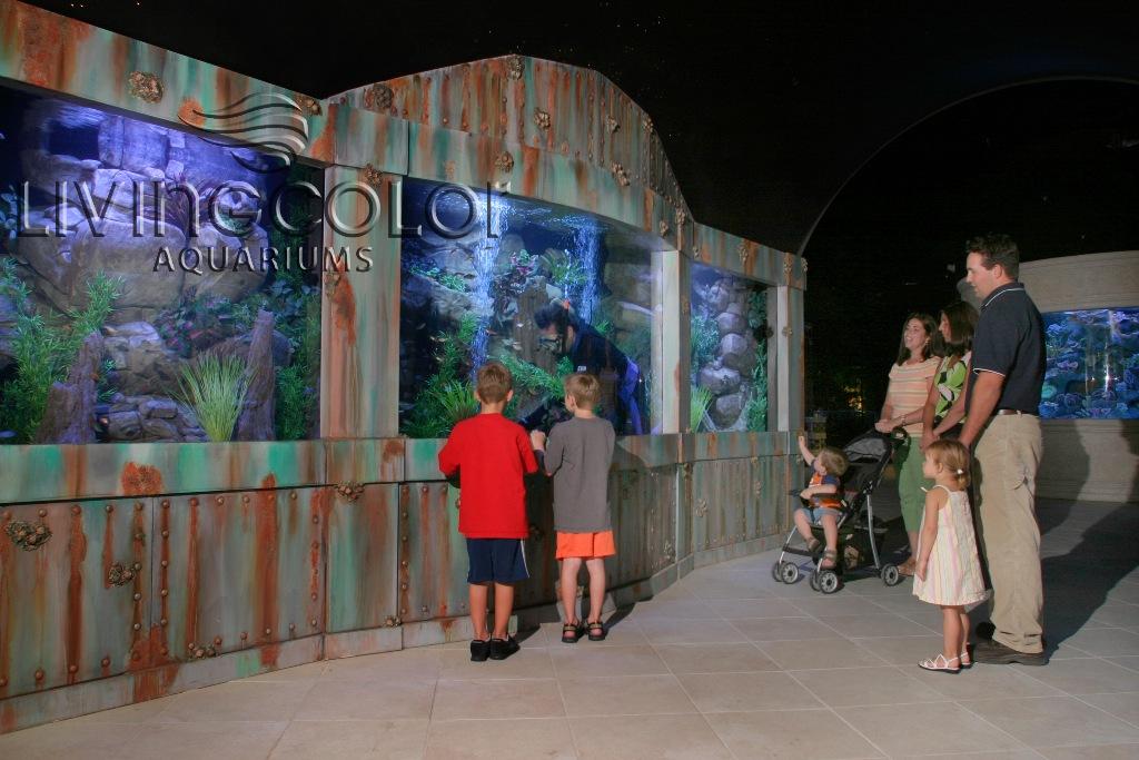 nation s largest aquarium store closes cflas