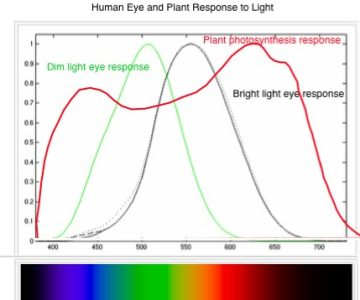 """Before Any Discussion of Aquarium Lighting Can Proceed, First We Have to Debunk the Myth About """"watts Per Gallon"""" Being a Measurement of Light Intensity.when the Only Practical Source Of…"""