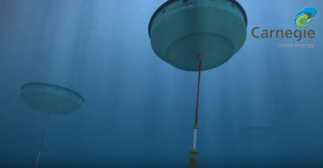 Wave Energy Harnesses the Power of the Ocean Currents to Generate Power