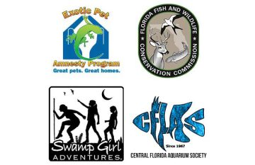 Exotic Pet Amnesty Day Returns to Central Florida in Kissimmee, Saturday, May 16, 2015. The Fish and Wildlife Conservation Commission (fwc) Hosts This Event with Its Partners to Promote responsible Pet…