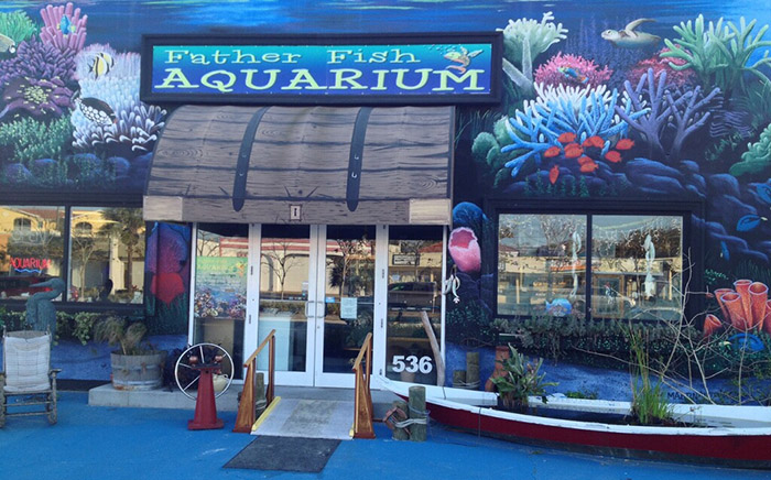 Father fish aquarium in venice florida wins battle to keep for The fish store