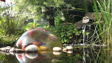 For Years, Hobbyists and Pond Lovers Have Been Finding Creative Ways to Further Enhance the Beauty That Their Pond or Water Garden, and Koi Fish Provide. An Above-water Observation Dome…
