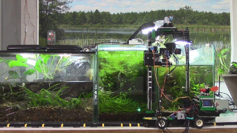 Lego Automatic Fish Feeder Cflas
