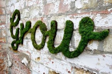 Looking to Spruce Up Some Drab Exterior Wall Space? One Need Look No Further to Create Living Art Than Moss Art, Also Referenced As Moss Graffiti. The Idea is Simple,…
