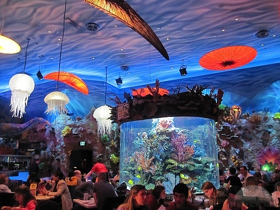 Aquarium At T Rex Restaurant In Downtown Disney Breaks