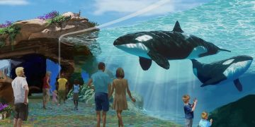 Ground-breaking Animal Welfare and Conservation Reforms a Start for Partnership Between Seaworld and Hsus